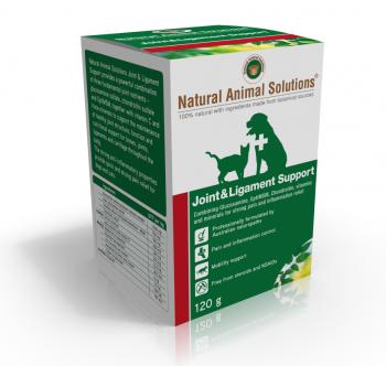 NAS Joint & Ligament 醫療級別關節四補粉 120g